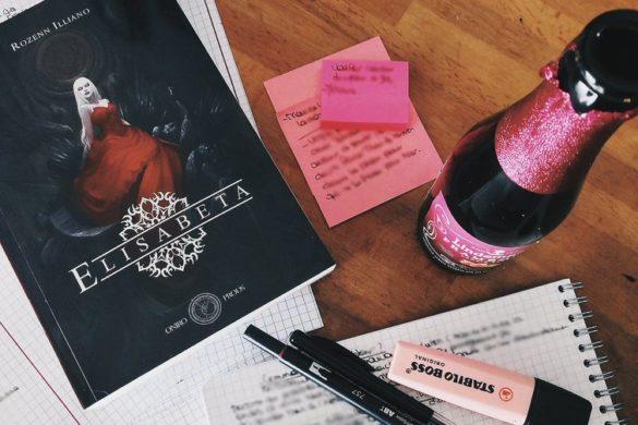 Notes de travail, roman Elisabeta et bouteille de bière
